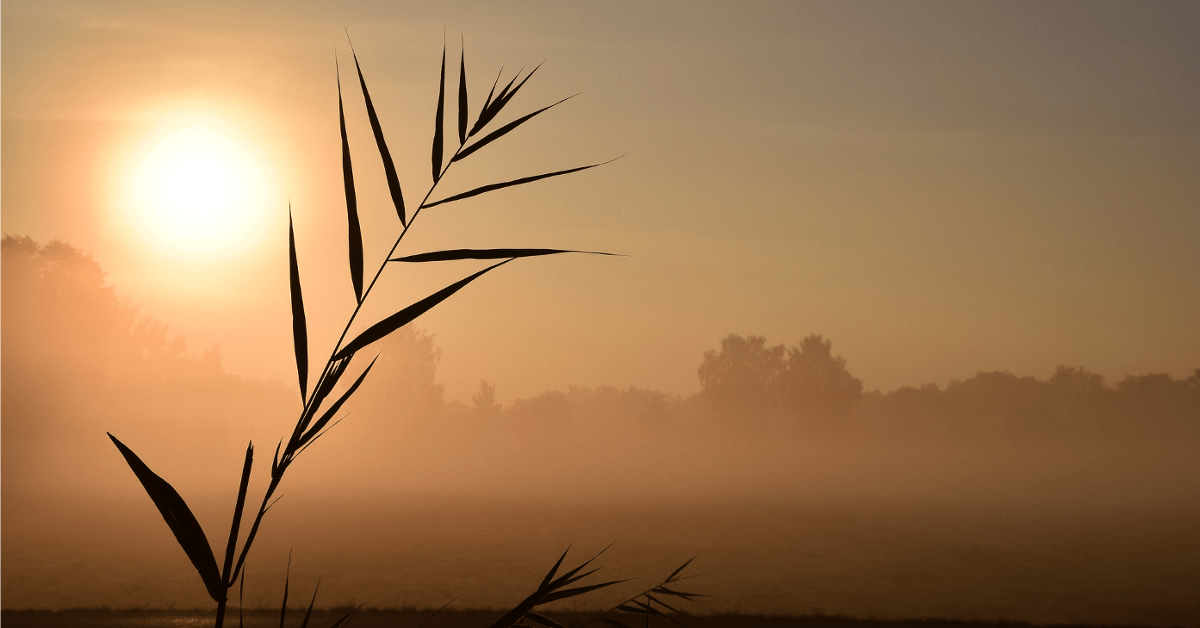 Ejercicios Espirituales para Sacerdotes